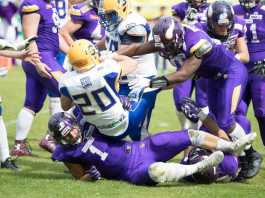 AFL Playoff Vikings s. Giants