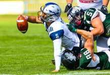 Danube Dragons vs. Steelsharks Traun