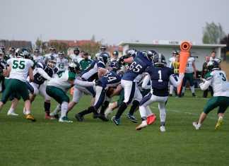 Asperhofen Blue Hawks vs. Danube Dragons2