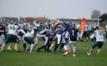 Asperhofen Blue Hawks vs. Danube Dragons2