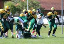 Upper Styrian Rhinos vs. Danube Dragons2 0:13