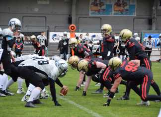 Gladiators Ried vs. Huskies Wels