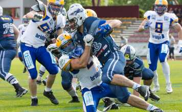Steelsharks Traun vs. Graz Giants