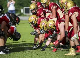 Telfs Patriots vs. Carinthian Lions