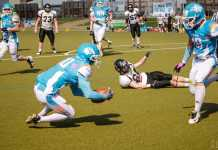Styrian Bears vs. Vienna Knights