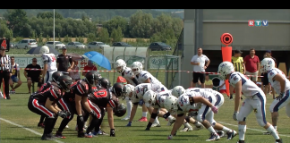 Stear Predators vs. Amstetten Thunder2