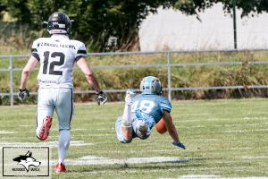 Huskies Wels vs. Predators Steyr