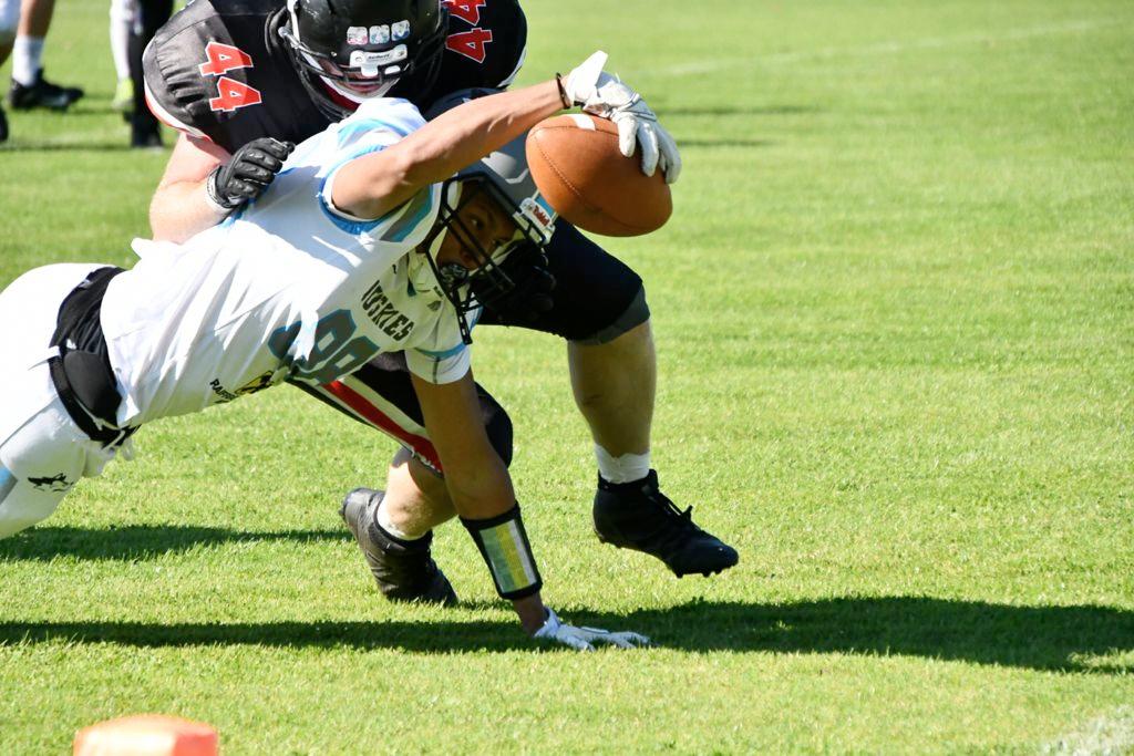 Predators Steyr vs. Wels Huskies